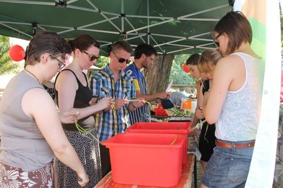 Fleißige Helfer sorgen für Gemüse-Nachschub. Bild: Jens Brehl CC BY-NC-SA 4.0