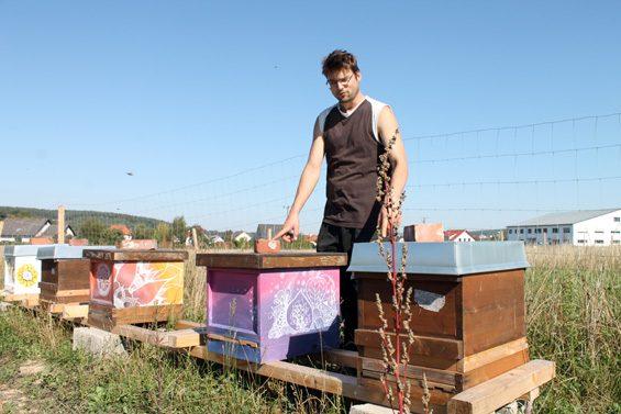 Die Bienen waren die ersten Tiere auf dem Archehof. Bild: Jens Brehl CC BY-NC-SA 4.0