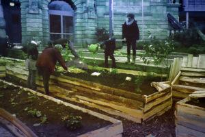 Bürger bepflanzen Hochbeete am Stadttheater Freiburg.